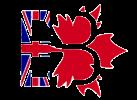 English Beaver